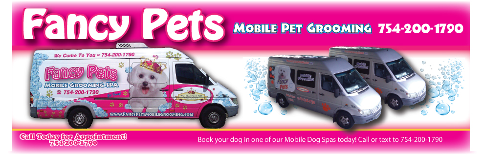 pet grooming in fort lauderdale, fl